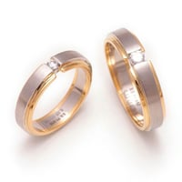 Platinum and Gold Fusion rings