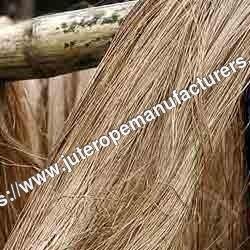 Musti Kusa Grass Fiber