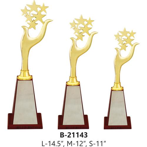 Star Trophy in Metal