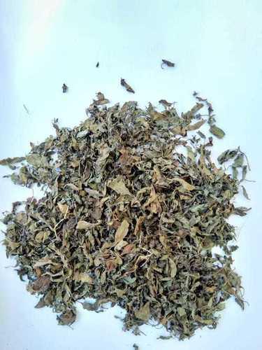 Tulsi Leaves (Dry)