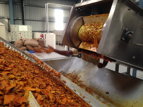 Ginger Turmeric Processing Plant