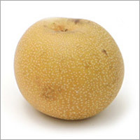 Pear (Bargmant)