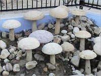 Artifacts Mushrooms