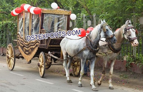 Beautiful Horse Drawn Covered Buggy Carriage