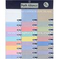 Filafil Shirting Fabric