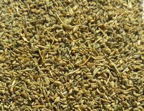 Carom seeds Indian