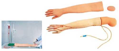 Multi Functional IV Training Arm
