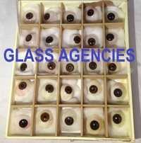 Brown Eye Artificial