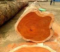 Wooden Teak Log