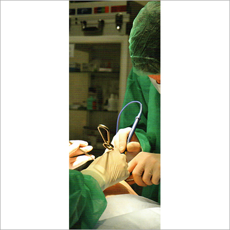 Surgical Glove