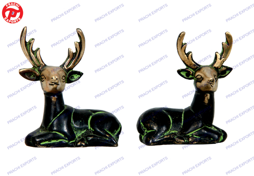 Deer Sitting In Pair