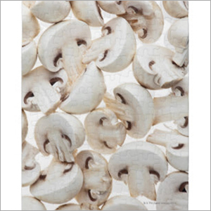 Fresh Cut Mushroom