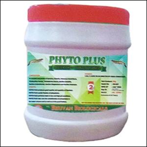 Prawn Medicines