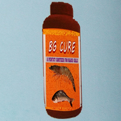 B.G CURE