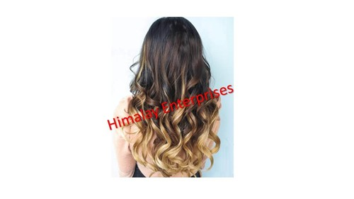Remy Indian Virgin Hair