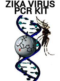 Zika Real Time RT-PCR Kit