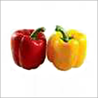 Red - Yellow Capsicum