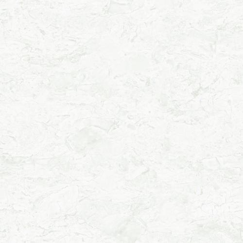 White Twin Charge Vitrified Tiles