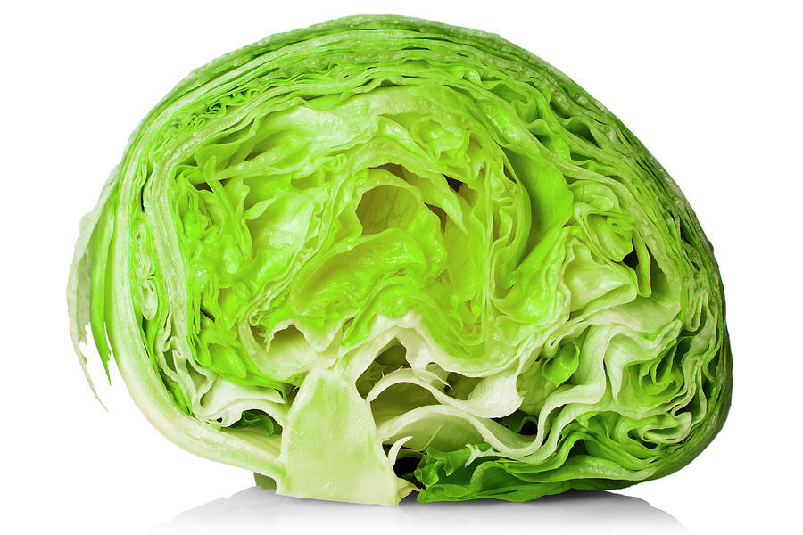 Fresh Cut Iceberg Lettuce