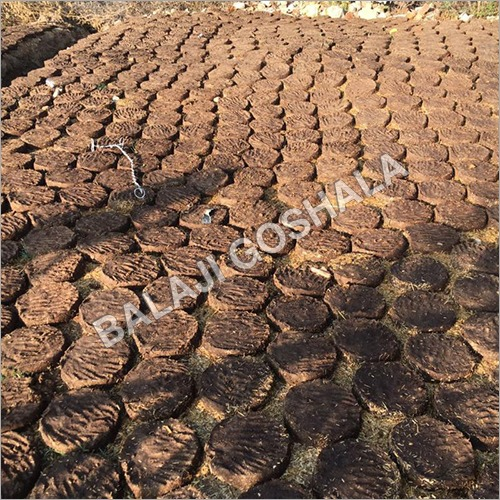 4707 India Cow Dung