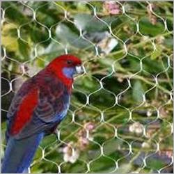 Pigeon net