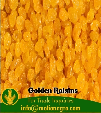 Golden Raisins Sultanas