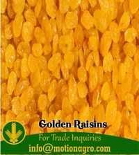 Golden Raisins Sultanas