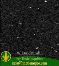 Black Cumin Seeds / Kalonji Seeds