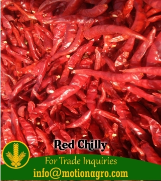 Red Chilly / Hot Red Chilly / Red Pepper