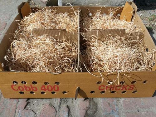 Packaging Wood Wool