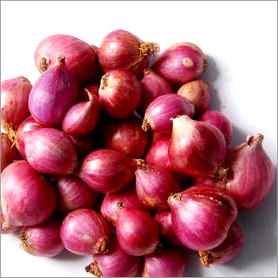 Red Fresh Onion