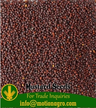 Mustard Seeds / Cayenne Seeds