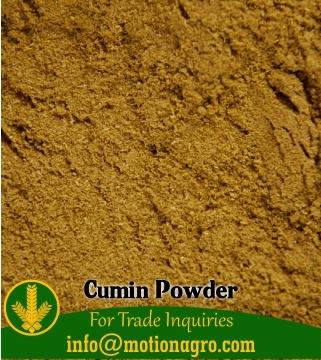 Cumin Powder / Ground Cumin