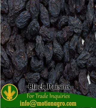 Black Raisin / Kismis