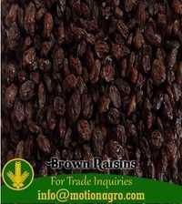Brown Raisins / Kismis