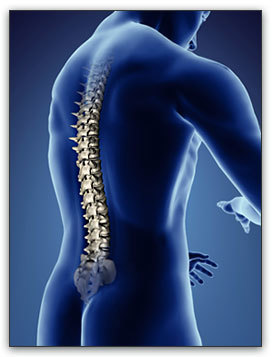 Orthopaedic Spinal Implants