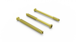 Cannulated Implants Screws