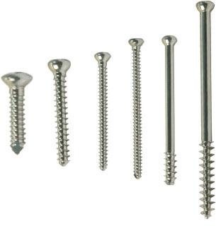Orthopaedic Bone Screws