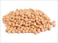 Nut Grampeas Seeds