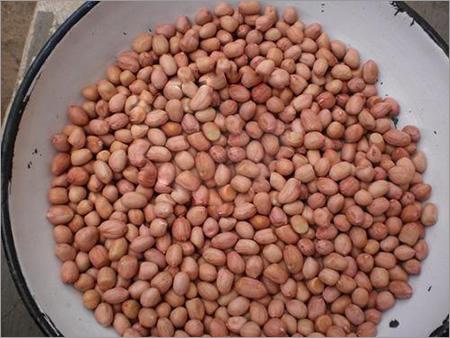 Groundnuts Java Peanuts