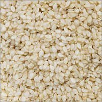 Whitish Sesame Seeds ( White Nile Quality )