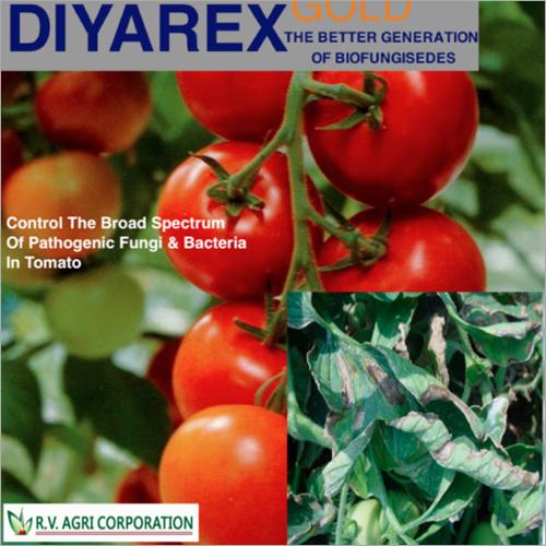Tomato Diyarex Gold Bio Fungicide