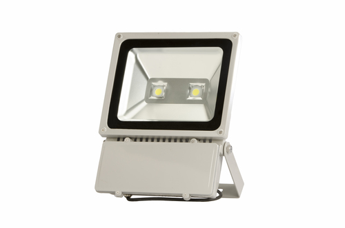 COB  FLOODLIGHT 100 WATTS