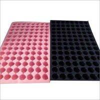 Disposable Seeding Trays