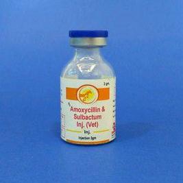Amoxicillin Sulbactum Injection