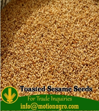 Toasted Hulled Sesame Seeds