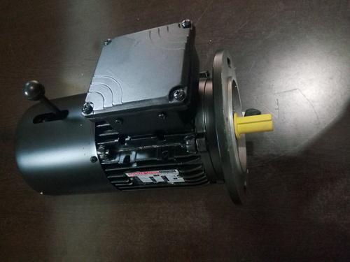 Flange Mounting Brake Motor