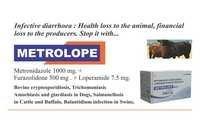 Metrolope Bolus