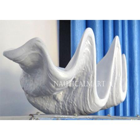 White Seasheel