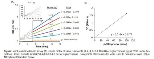 α-Glucosidase Activity Colorimetric Assay Kit
